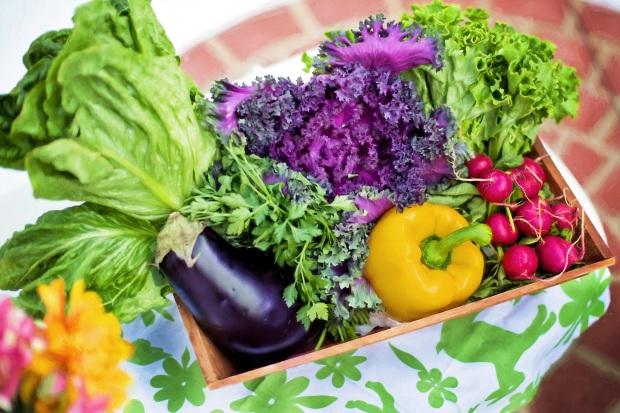 vegetables-790022